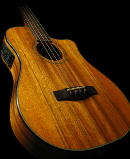 electric-acoustic bass guitars